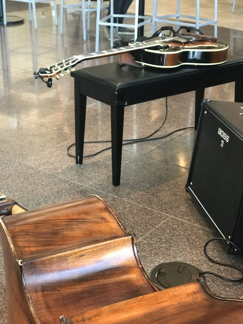 Guitar and Upright Bass Duo Winnipeg Airport.